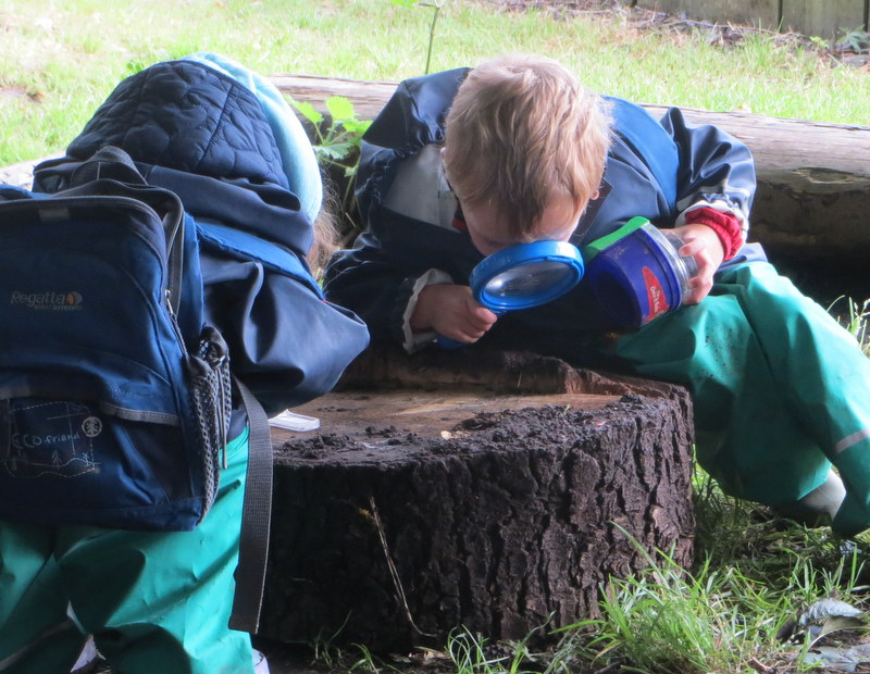 Investigating outdoors
